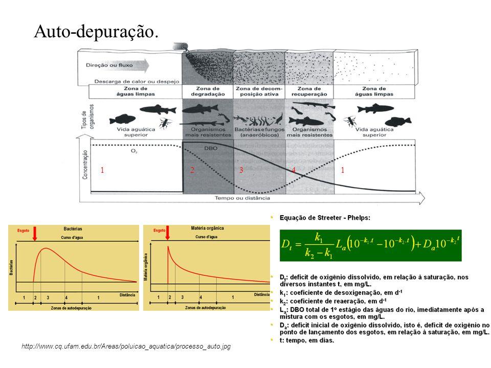11234 http://www.cq.ufam.edu.br/Areas/poluicao_aquatica/processo_auto.jpg Auto-depuração.