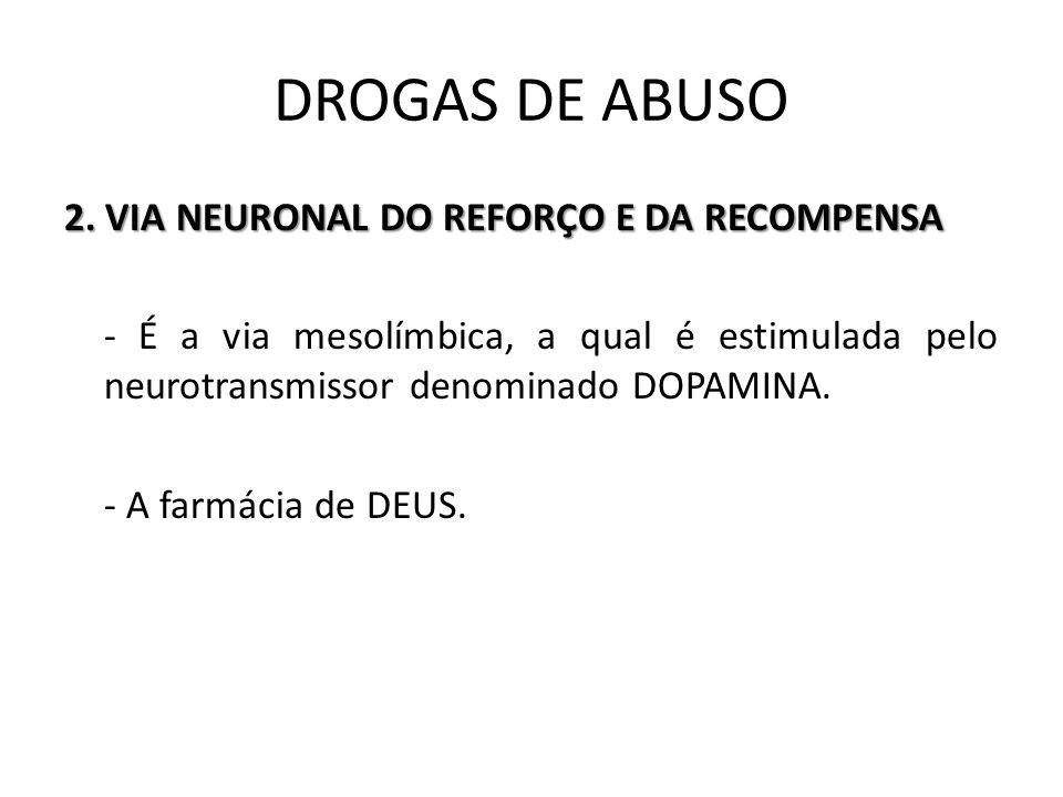 2. VIA NEURONAL DO REFORÇO E DA RECOMPENSA - É a via mesolímbica, a qual é estimulada pelo neurotransmissor denominado DOPAMINA. - A farmácia de DEUS.