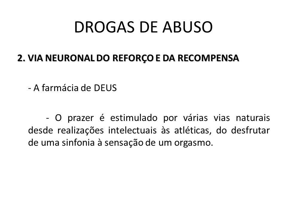 2. VIA NEURONAL DO REFORÇO E DA RECOMPENSA - A farmácia de DEUS - O prazer é estimulado por várias vias naturais desde realizações intelectuais às atl