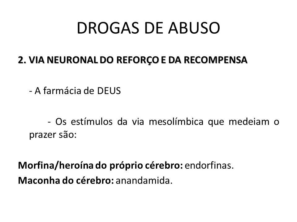 2. VIA NEURONAL DO REFORÇO E DA RECOMPENSA - A farmácia de DEUS - Os estímulos da via mesolímbica que medeiam o prazer são: Morfina/heroína do próprio