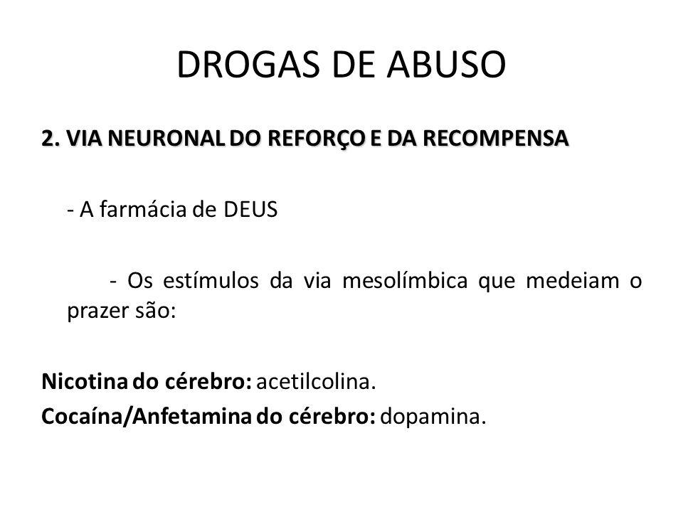2. VIA NEURONAL DO REFORÇO E DA RECOMPENSA - A farmácia de DEUS - Os estímulos da via mesolímbica que medeiam o prazer são: Nicotina do cérebro: aceti