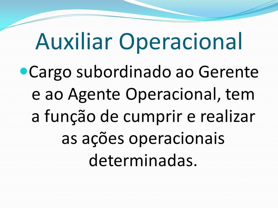 Auxiliar Operacional Cargo subordinado ao Gerente e ao Agente Operacional, tem a função de cumprir e realizar as ações operacionais determinadas.