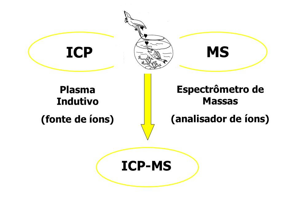 ICP MS Plasma Indutivo (fonte de íons) ICP-MS Espectrômetro de Massas (analisador de íons)