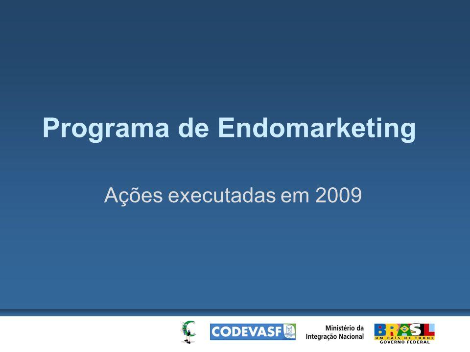 Programa de Endomarketing Ações executadas em 2009