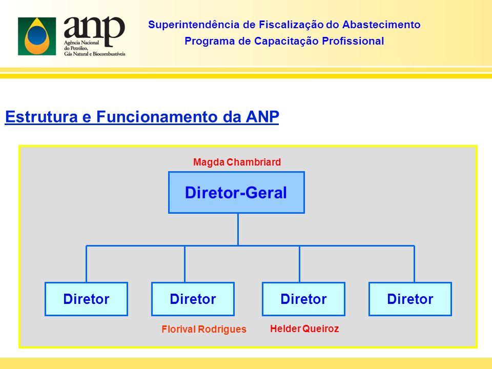 Estrutura e Funcionamento da ANP Diretor-Geral Diretor Magda Chambriard Florival Rodrigues Superintendência de Fiscalização do Abastecimento Programa de Capacitação Profissional Helder Queiroz