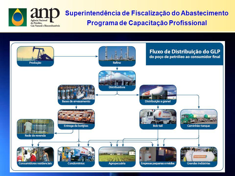 Superintendência de Fiscalização do Abastecimento Programa de Capacitação Profissional