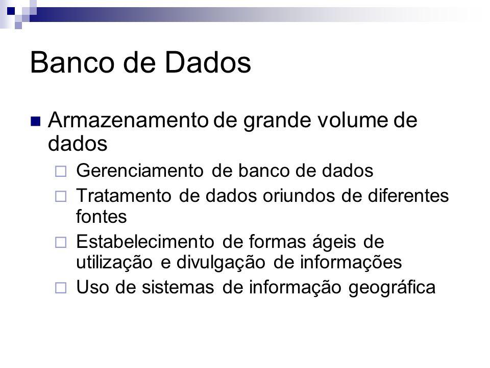 Banco de Dados Armazenamento de grande volume de dados Gerenciamento de banco de dados Tratamento de dados oriundos de diferentes fontes Estabelecimento de formas ágeis de utilização e divulgação de informações Uso de sistemas de informação geográfica