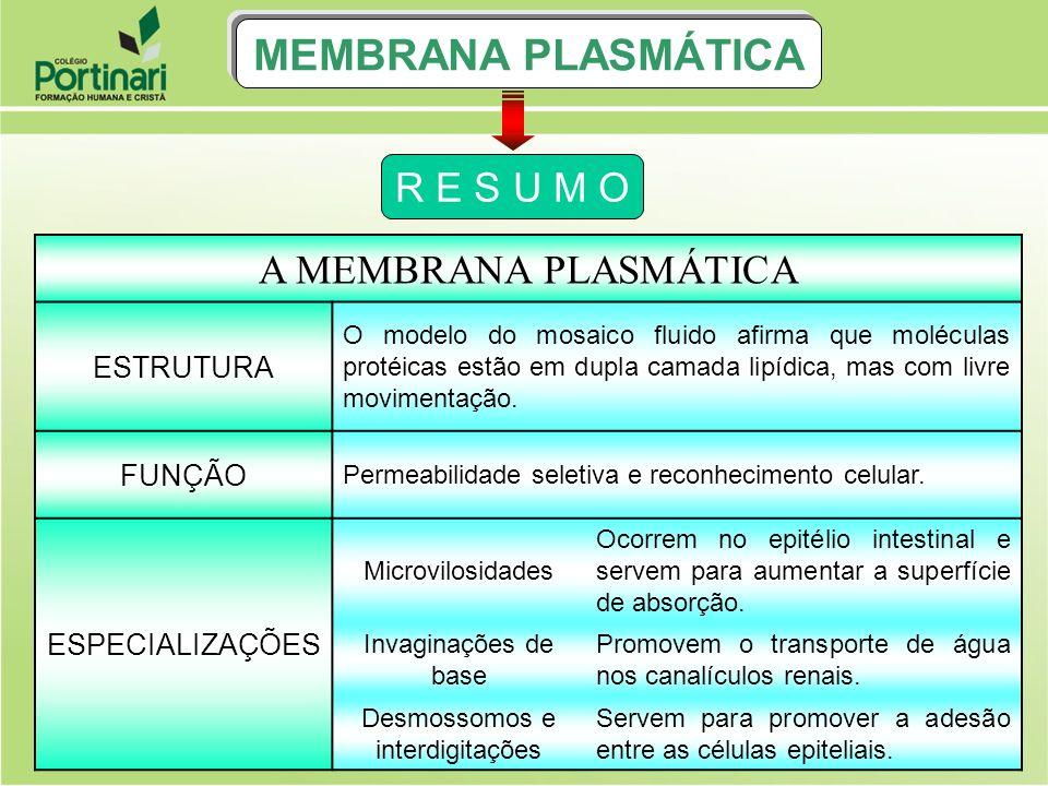 ISOTONIA P.C M.P núcleo vacúolo de suco celular MEIO HIPO CÉL.