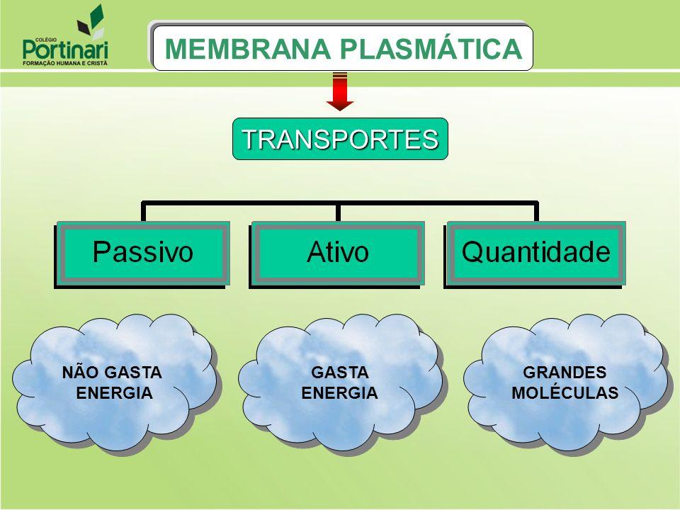 RESUMO TRANSPORTE ATIVO MEMBRANA PLASMÁTICA M.P S U B S T Â N C I A S MEIO ] [ ] [