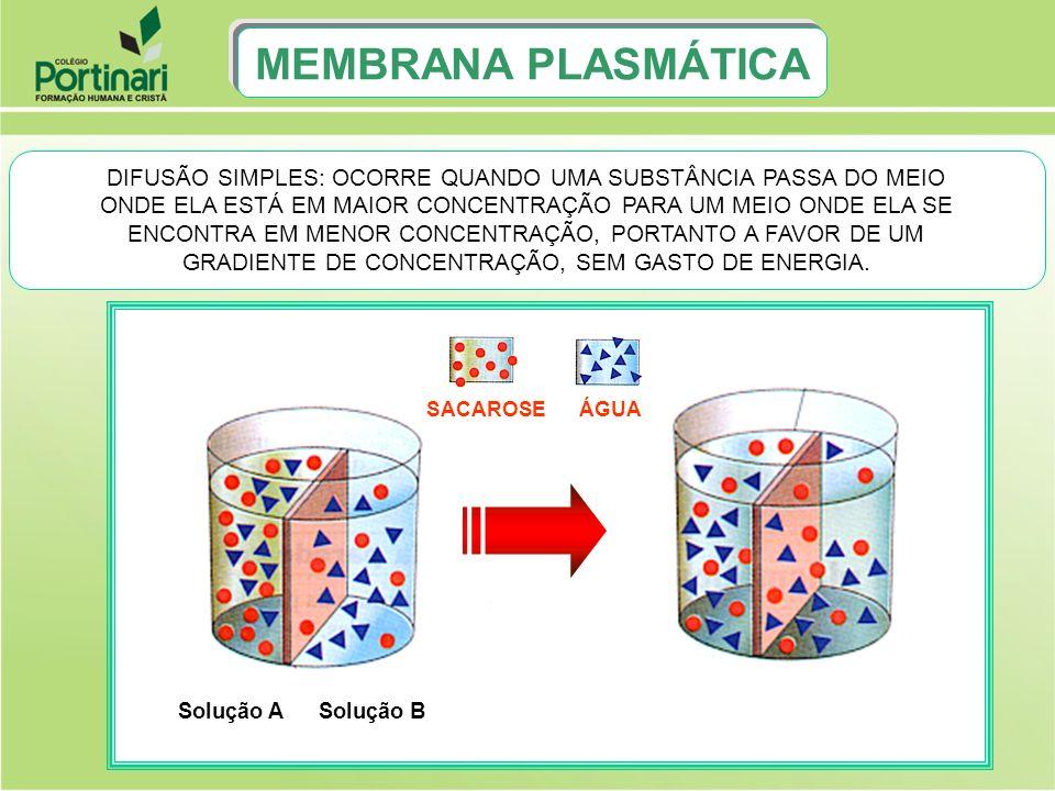 FLUXO DE ÁGUA NAS CÉLULAS VEGETAIS D P D = P O - P TS C = S i -M MEMBRANA PLASMÁTICA ou DPD = DÉFICIT DE PRESSÃO DE DIFUSÃO PO = PRESSÃO OSMÓTICA PT = PRESSÃO DE TURGESCÊNCIA SC = SUCÇÃO CELULAR SI = SUCÇÃO INTERNA M = PRESSÃO DA MEMBRANA