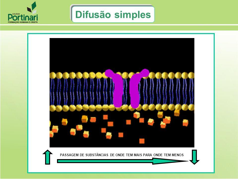 GLICOSEGLICOSE RECONHECIMENTO M.P LIBERAÇÃO MEMBRANA PLASMÁTICA CAPTURA M.P TRANSLOCAÇÃO Glicose M.P Permease DIFUSÃO FACILITADA: É A PASSAGEM DE SUBSTÂNCIAS ATRAVÉS DA MEMBRANA PLASMÁTICA COM A AJUDA DE FACILITADORES, TAMBÉM CHAMADOS DE CARREADORES DE MEMBRANA OU PERMEASES (ENZIMAS)