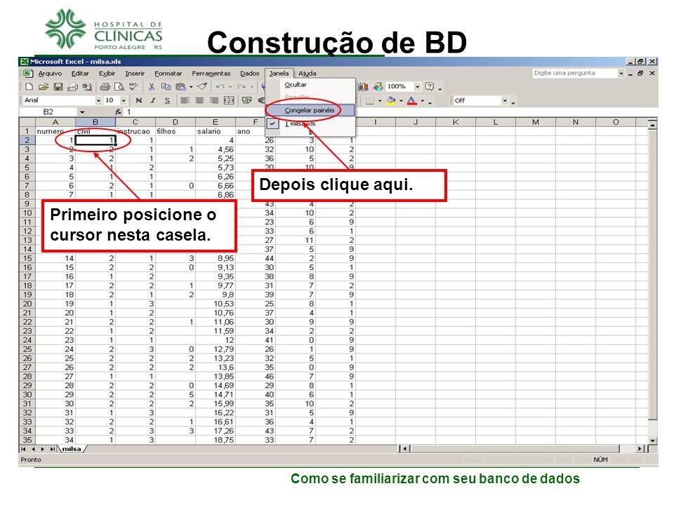Como se familiarizar com seu banco de dados Construção de BD Caso você use a versão 2010 do Excel: –Para facilitar a digitação, algumas linhas e algumas colunas podem ficar fixas na planilha.