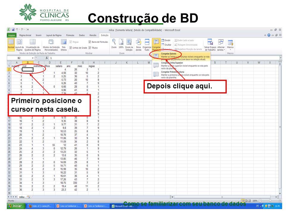 Como se familiarizar com seu banco de dados Construção de BD O ideal é que daqui em diante os próximos passos sejam executados no arquivo milsa.xls