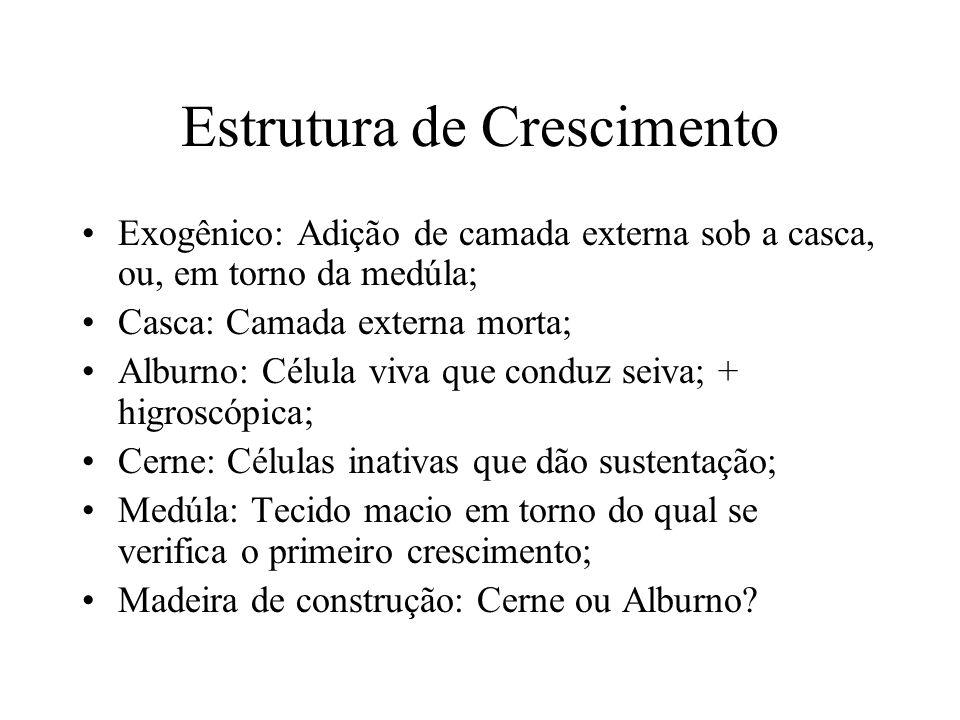 Estrutura de Crescimento Exogênico: Adição de camada externa sob a casca, ou, em torno da medúla; Casca: Camada externa morta; Alburno: Célula viva qu
