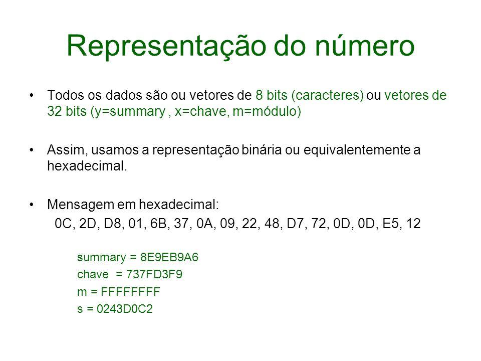 Representação do número Todos os dados são ou vetores de 8 bits (caracteres) ou vetores de 32 bits (y=summary, x=chave, m=módulo) Assim, usamos a repr