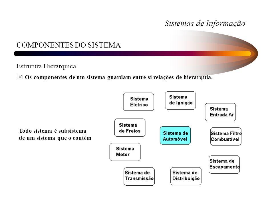 Sistemas de Informação COMPONENTES DO SISTEMA Estrutura Hierárquica + Os componentes de um sistema guardam entre si relações de hierarquia. Todo siste