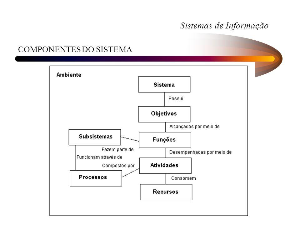 Sistemas de Informação COMPONENTES DO SISTEMA