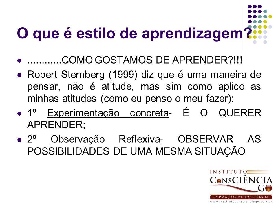 O que é estilo de aprendizagem?............COMO GOSTAMOS DE APRENDER?!!! Robert Sternberg (1999) diz que é uma maneira de pensar, não é atitude, mas s
