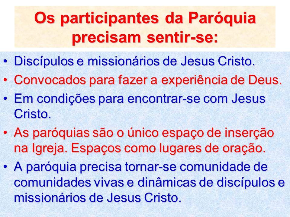 Os participantes da Paróquia precisam sentir-se: Discípulos e missionários de Jesus Cristo.Discípulos e missionários de Jesus Cristo. Convocados para