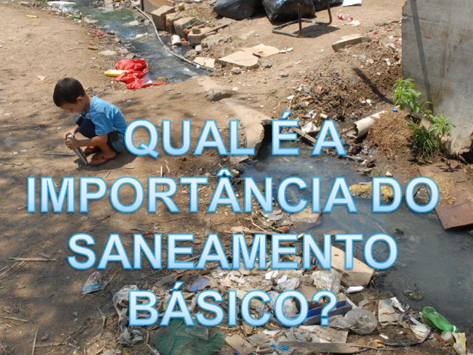 Importância de saneamento básico