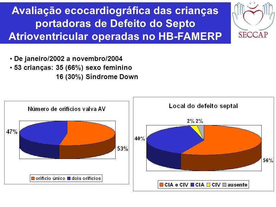 Avaliação ecocardiográfica das crianças portadoras de Defeito do Septo Atrioventricular operadas no HB-FAMERP De janeiro/2002 a novembro/2004 53 crian