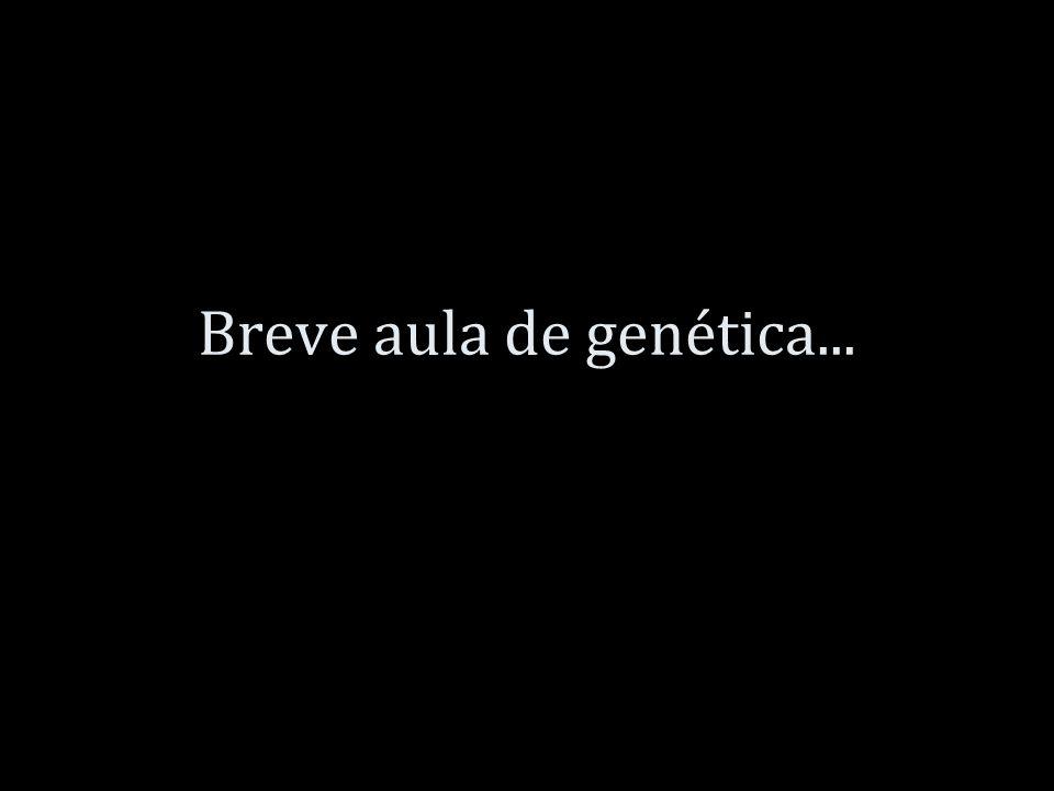 Breve aula de genética...