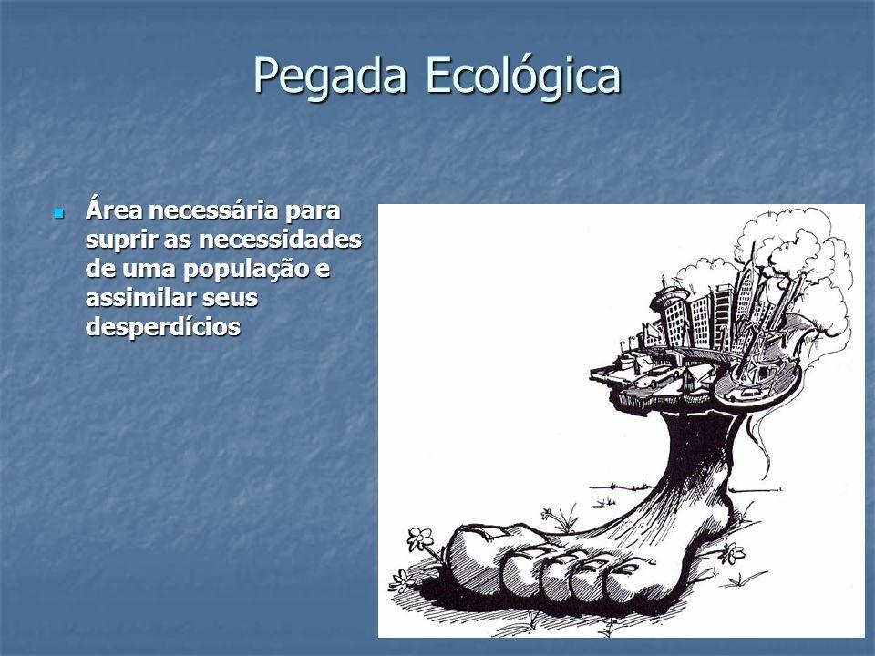 Pegada Ecológica Área necessária para suprir as necessidades de uma população e assimilar seus desperdícios Área necessária para suprir as necessidade