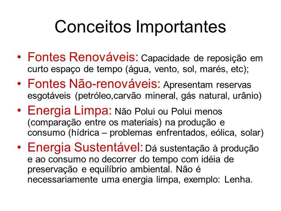 Energia Elétrica Diferenciação entre hidroelétricas e termoelétricas; Vantagens e desvantagens das usinas hidroelétricas; Situação brasileira na geração de energia elétrica; Apagão.