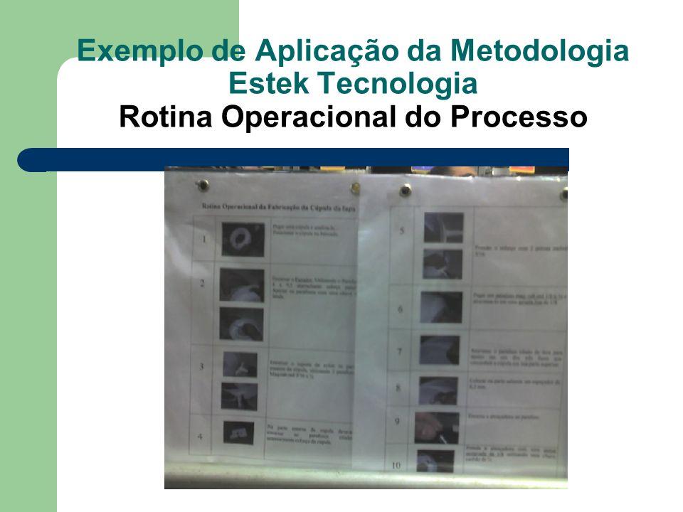 Exemplo de Aplicação da Metodologia Estek Tecnologia Rotina Operacional do Processo