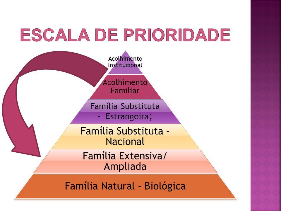 Acolhimento Institucional Acolhimento Familiar Família Substituta - Estrangeira ; Família Substituta - Nacional Família Extensiva/ Ampliada Família Na