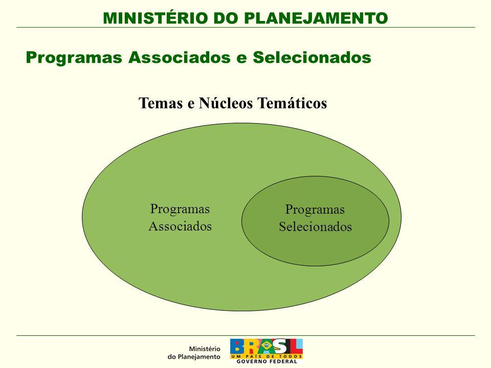 MINISTÉRIO DO PLANEJAMENTO SPI Temas de Infraestrutura Temas Sociais Temas Econômicos e Especiais Definição dos Núcleos Temáticos e Temas