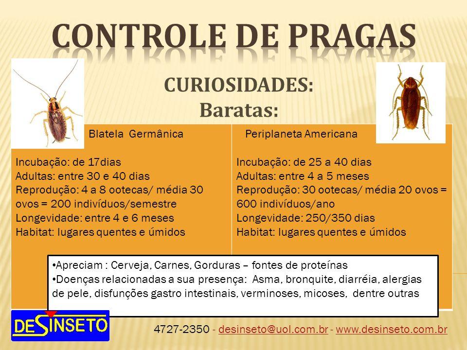 4727-2350 - desinseto@uol.com.br - www.desinseto.com.brdesinseto@uol.com.brwww.desinseto.com.br CURIOSIDADES: Baratas: Blatela Germânica Incubação: de