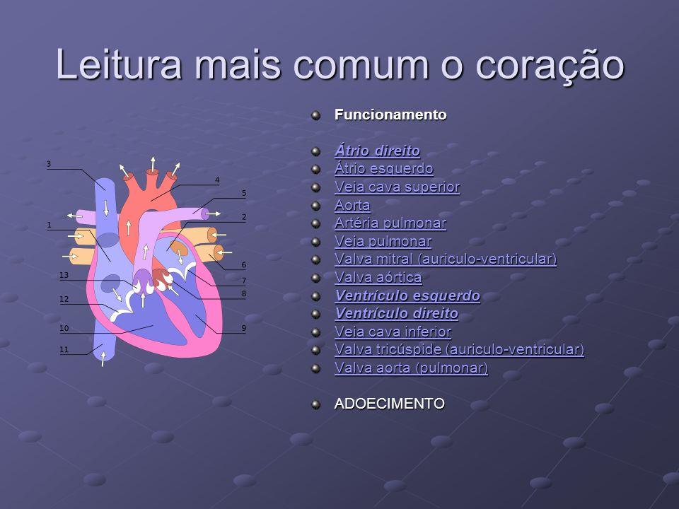 Leitura mais comum o coração Funcionamento Átrio direito Átrio direito Átrio esquerdo Átrio esquerdo Veia cava superior Veia cava superior Aorta Artér