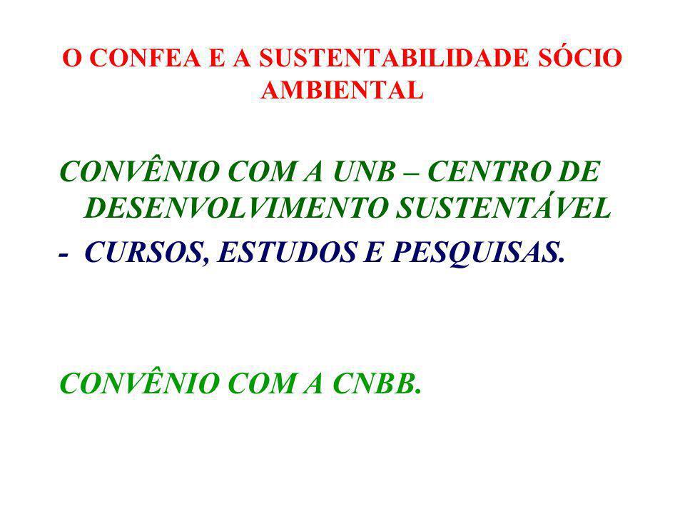 O CONFEA E A SUSTENTABILIDADE SÓCIO AMBIENTAL 2.