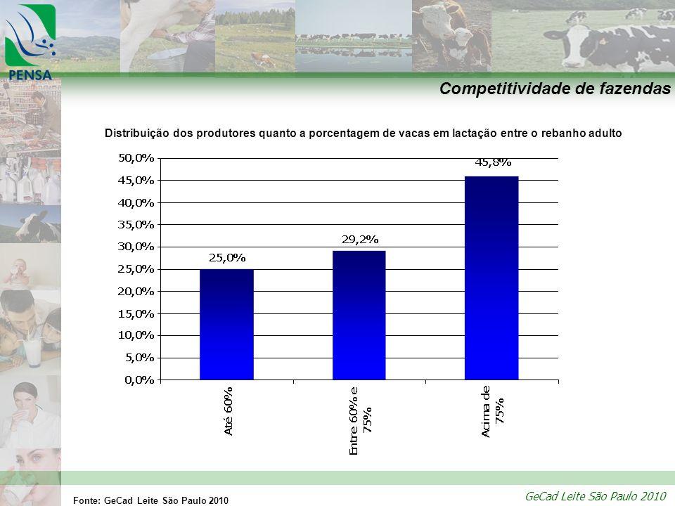 GeCad Leite São Paulo 2010 Competitividade de fazendas Distribuição dos produtores quanto a porcentagem de vacas em lactação entre o rebanho adulto Fo