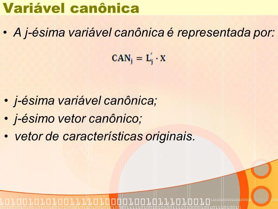 Variável canônica A j-ésima variável canônica é representada por: j-ésima variável canônica; j-ésimo vetor canônico; vetor de características originai