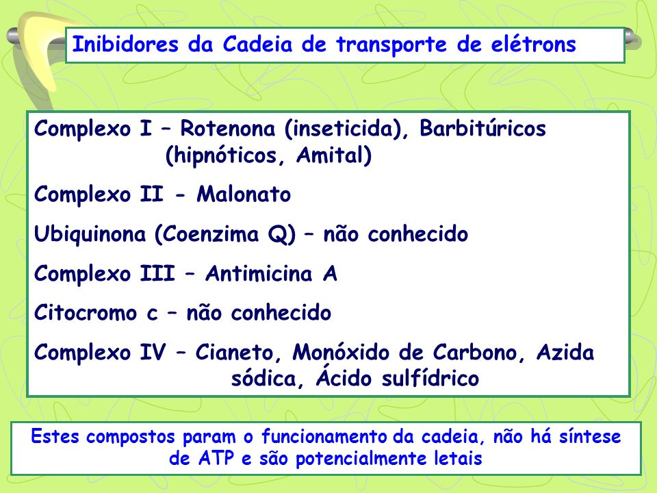 Inibidores da Cadeia de transporte de elétrons Complexo I – Rotenona (inseticida), Barbitúricos (hipnóticos, Amital) Complexo II - Malonato Ubiquinona