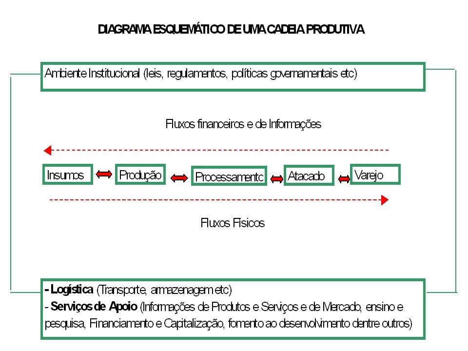 Exemplo: Visualização da cadeia produtiva da indústria de confecções Indústria de Confecções Máquinas e Equipamentos Tecidos Aviamentos Componentes Sintéticos Componentes Metálicos Indústria de Polímeros Indústria Têxtil Escolas e Universidades Unidades de Formação Profissional Centros de Pesquisa e Serviços Tecnológicos Sindicatos / Associações Instituições Financeiras Instituições de apoio DesignTendências de Moda / Estilo Sacoleiras Consumidores locais Mercado externo Feiras de moda Moda íntima Moda Praia Surfwear Moda feminina Moda masculina Moda infantil Mercados Agências Governamentais