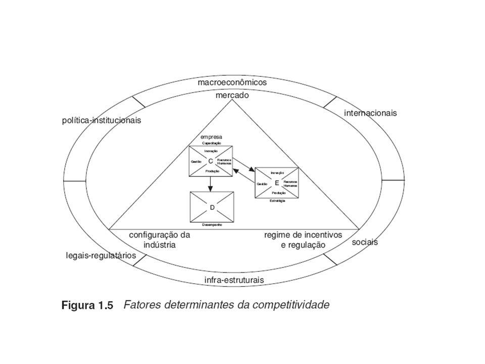 Posicionamento Cooperação Fortalecimento Diferenciação Ambientação Articulação Ação Estrutural Região/Setor/Cadeia Sistêmica Global / Regional / Local Empresarial Teoria do Negócio / Gestão Empreendedorismo Os três níveis da competitividade