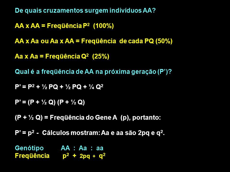 De quais cruzamentos surgem indivíduos AA? AA x AA = Freqüência P 2 (100%) AA x Aa ou Aa x AA = Freqüência de cada PQ (50%) Aa x Aa = Freqüência Q 2 (