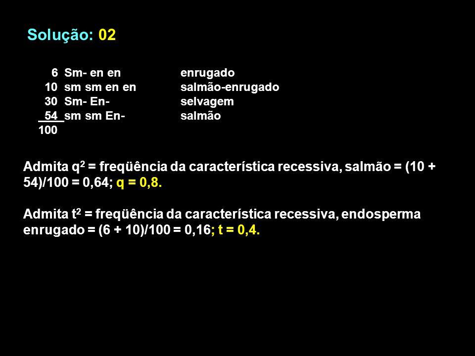 Solução: 02 6 Sm- en enenrugado 10 sm sm en en salmão-enrugado 30 Sm- En-selvagem 54 sm sm En-salmão 100 Admita q 2 = freqüência da característica recessiva, salmão = (10 + 54)/100 = 0,64; q = 0,8.