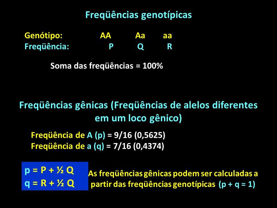 Freqüências genotípicas Genótipo: AAAaaa Freqüência: P Q R Soma das freqüências = 100% Freqüências gênicas (Freqüências de alelos diferentes em um loco gênico) Freqüência de A (p) = 9/16 (0,5625) Freqüência de a (q) = 7/16 (0,4374) p = P + ½ Q q = R + ½ Q As freqüências gênicas podem ser calculadas a partir das freqüências genotípicas (p + q = 1)