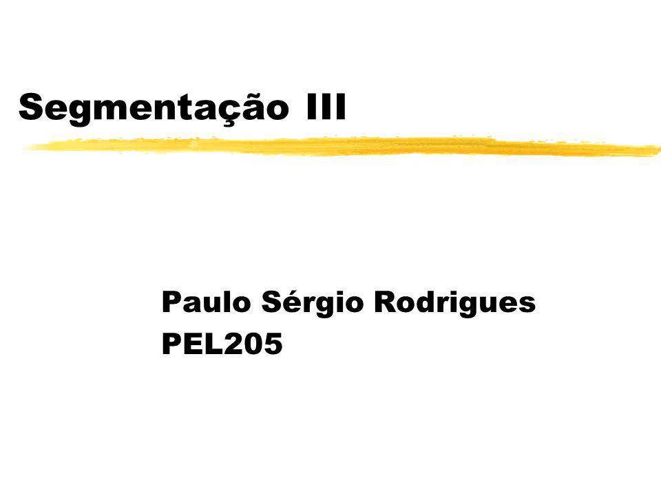 Segmentação III Paulo Sérgio Rodrigues PEL205