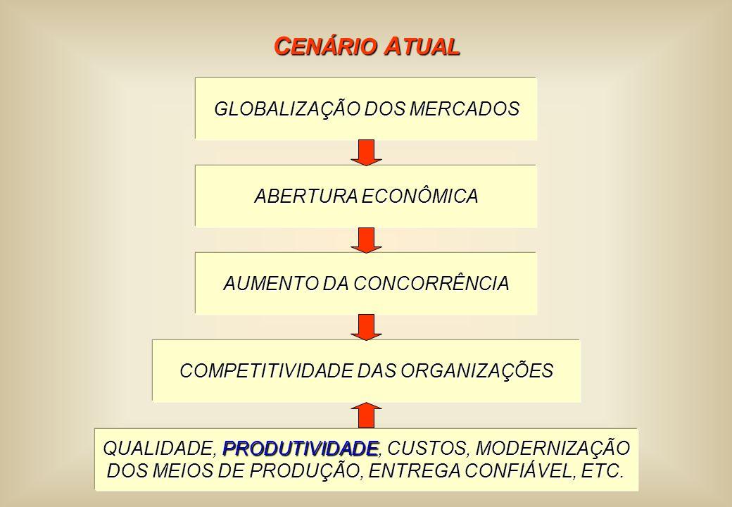 C ENÁRIO A TUAL GLOBALIZAÇÃO DOS MERCADOS ABERTURA ECONÔMICA AUMENTO DA CONCORRÊNCIA COMPETITIVIDADE DAS ORGANIZAÇÕES QUALIDADE, PRODUTIVIDADE, CUSTOS