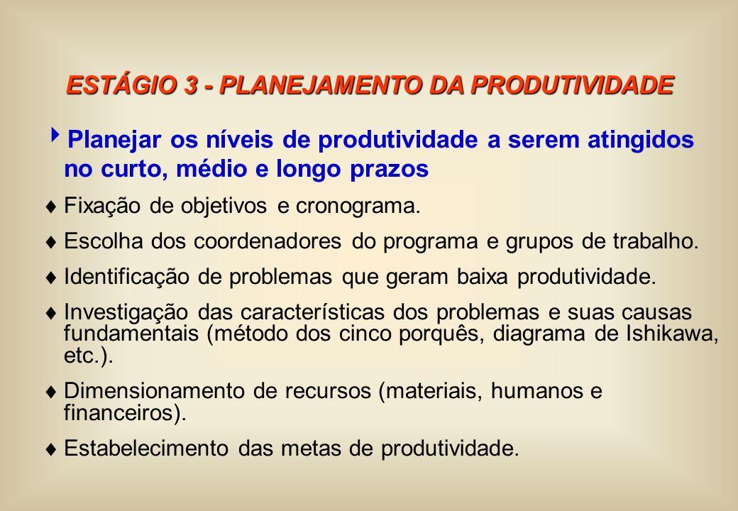 ESTÁGIO 3 - PLANEJAMENTO DA PRODUTIVIDADE Planejar os níveis de produtividade a serem atingidos no curto, médio e longo prazos Fixação de objetivos e