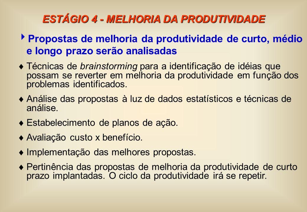 ESTÁGIO 4 - MELHORIA DA PRODUTIVIDADE Propostas de melhoria da produtividade de curto, médio e longo prazo serão analisadas Técnicas de brainstorming