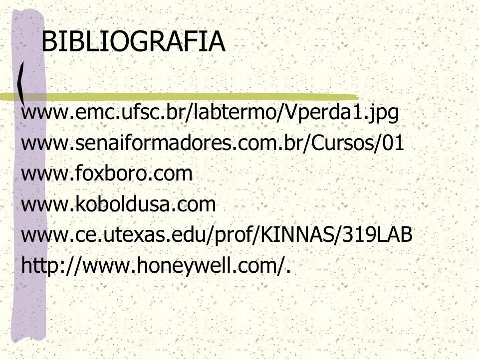 BIBLIOGRAFIA www.emc.ufsc.br/labtermo/Vperda1.jpg www.senaiformadores.com.br/Cursos/01 www.foxboro.com www.koboldusa.com www.ce.utexas.edu/prof/KINNAS