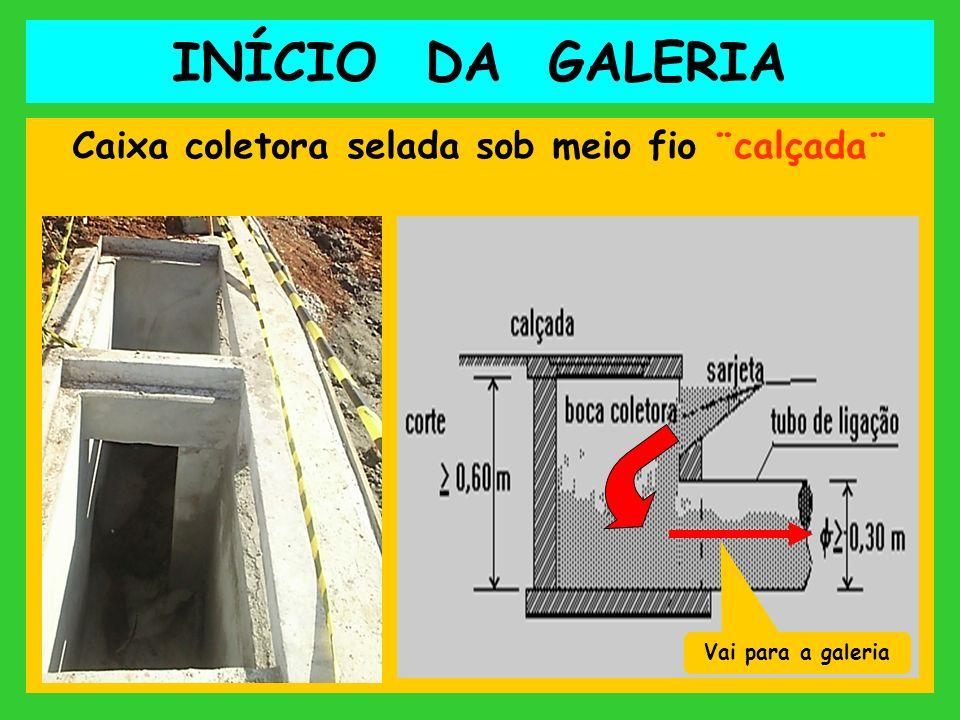 INÍCIO DA GALERIA Caixa coletora selada sob meio fio ¨calçada¨ Vai para a galeria