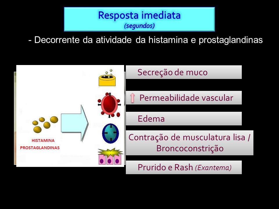 - Decorrente da atividade da histamina e prostaglandinas Permeabilidade vascular Edema Secreção de muco Contração de musculatura lisa / Broncoconstriç