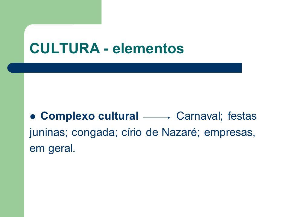 CULTURA - elementos Complexo cultural Carnaval; festas juninas; congada; círio de Nazaré; empresas, em geral.